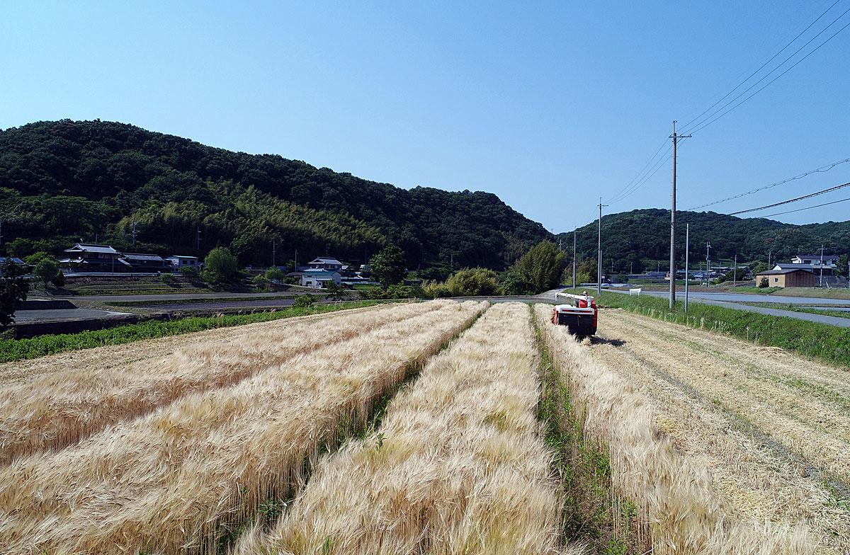 ドローンと農業1